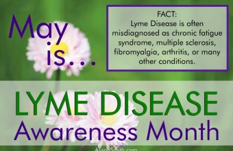 What-is-Lyme-Disease-Fact-2-1024x681